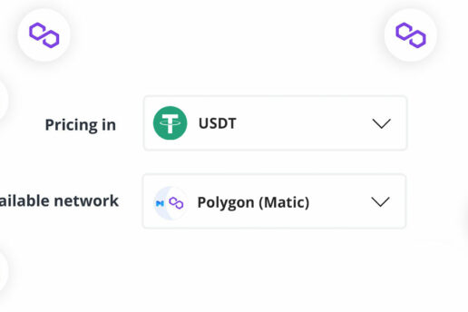 How to Use Polygon Layer 2 Network to Make Payments